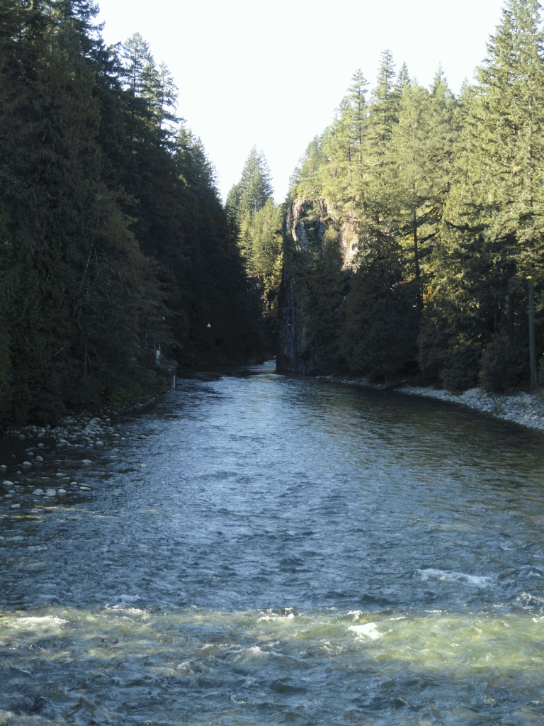 Recreation sites and trails bc for Chehalis river fishing