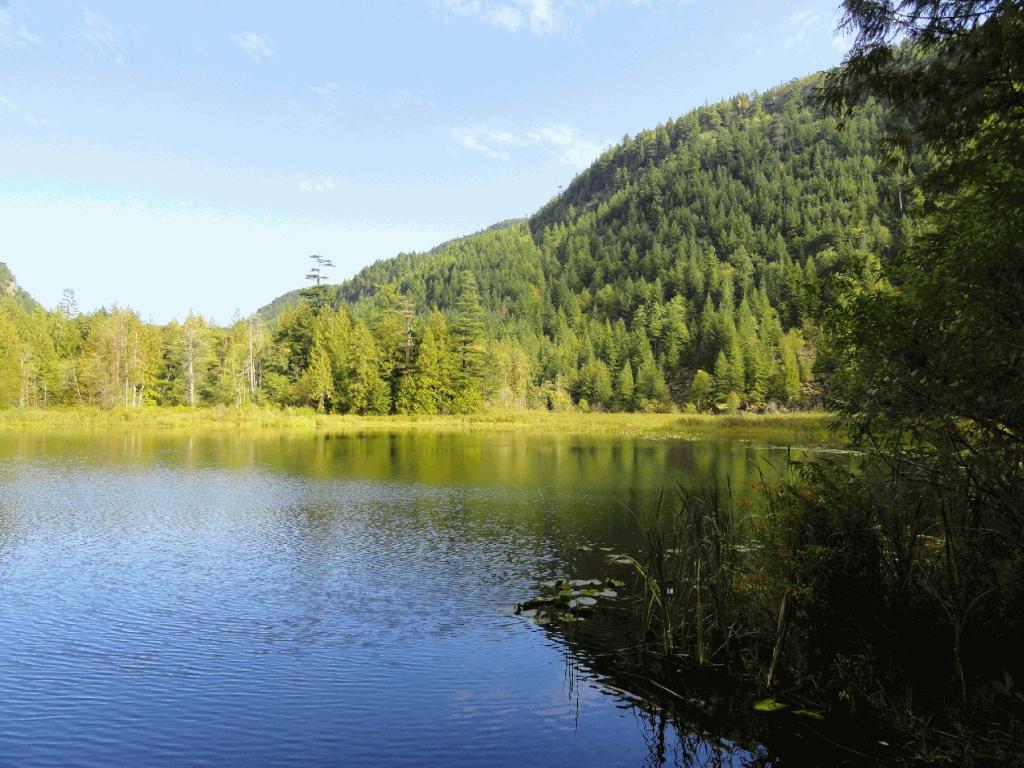 hicks lake campground