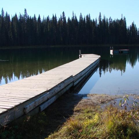 Amanita Lake