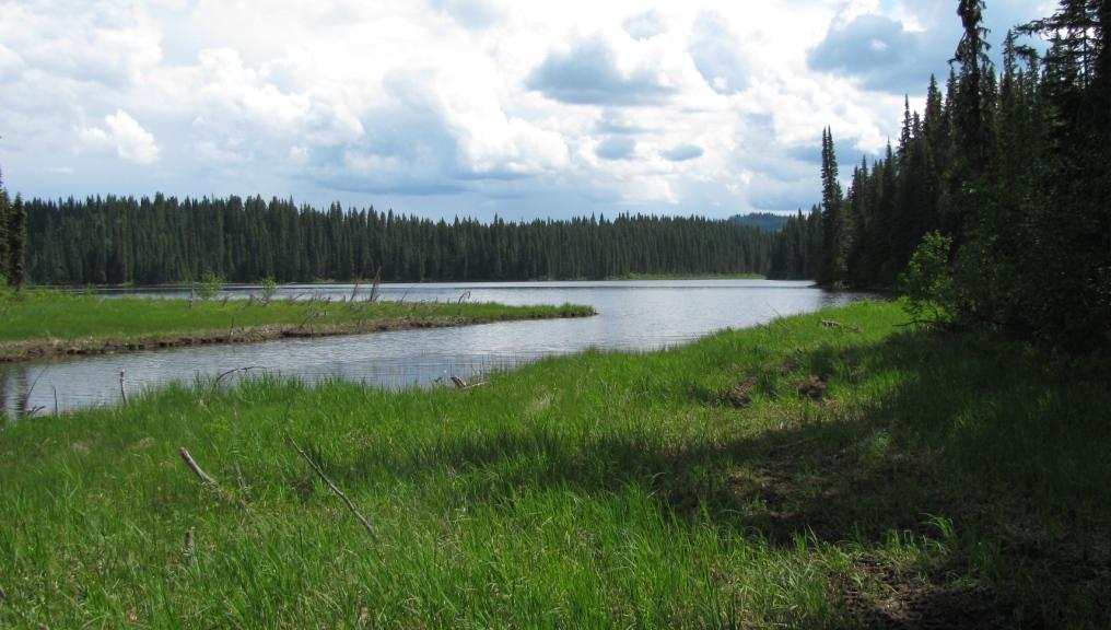 Freya Lake Trail (Bratko Lake)