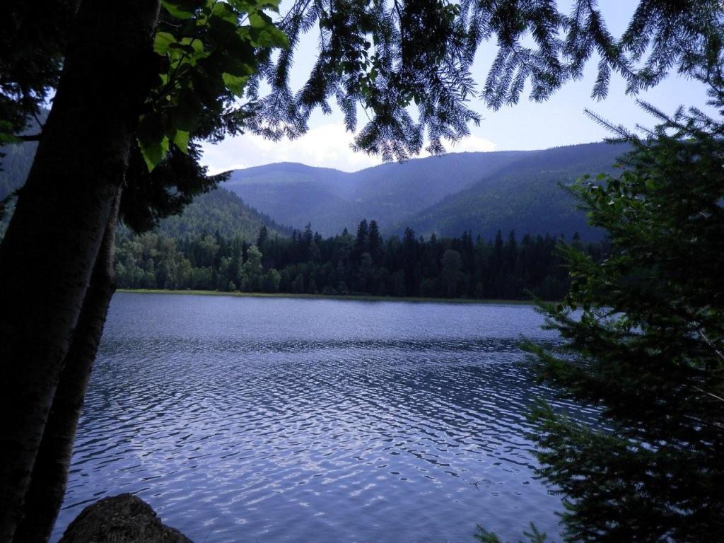 Sugar Lake 1 Mile