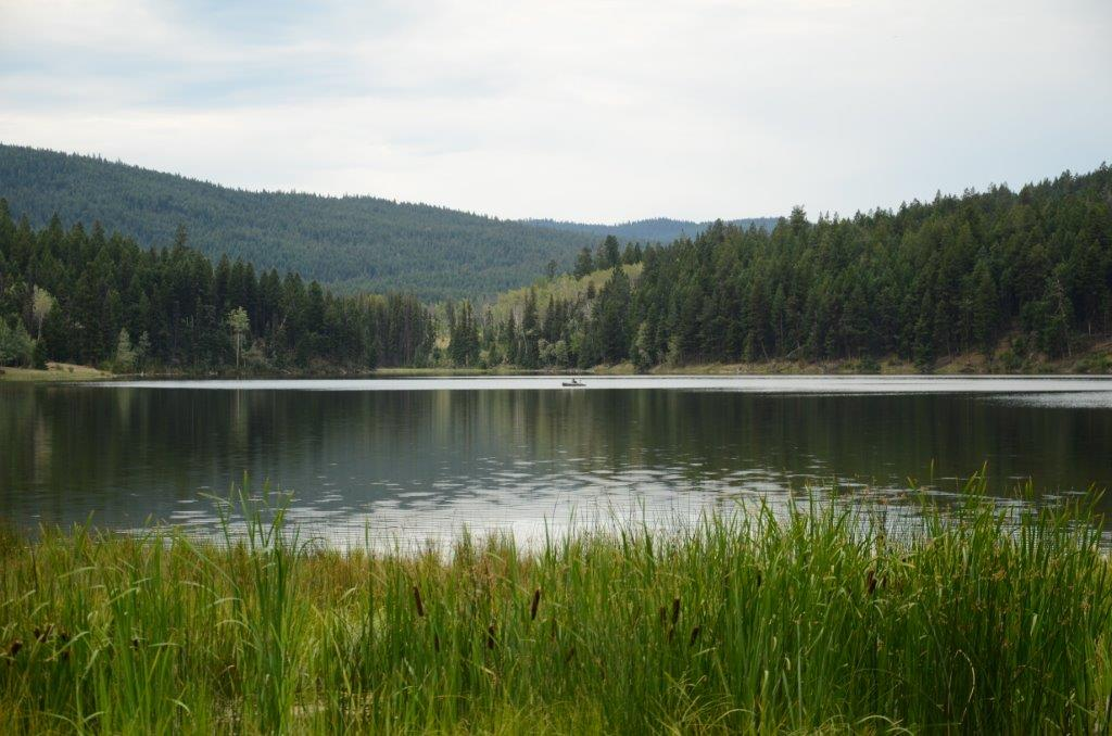 Duffy Lake