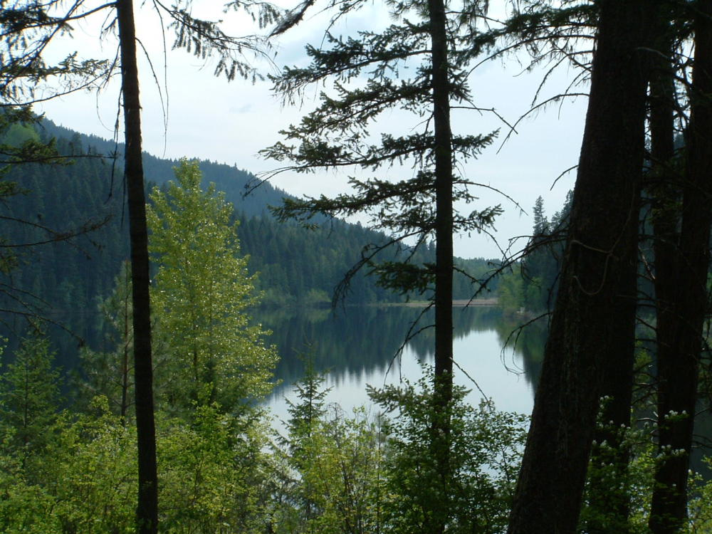 Harper Lake