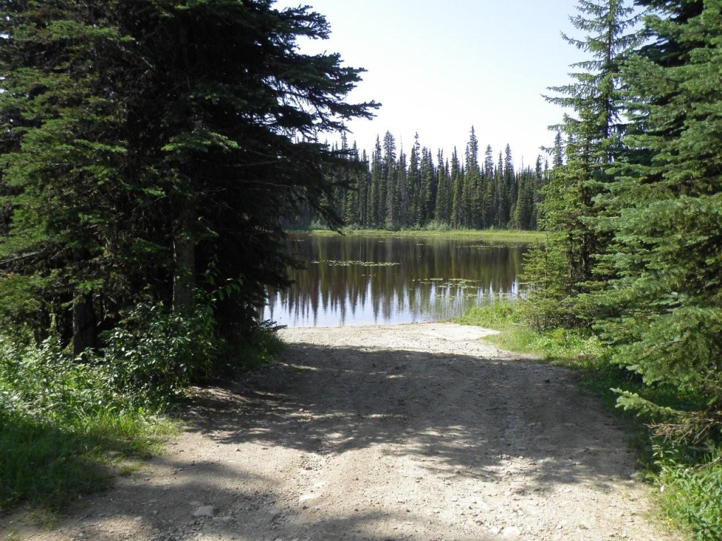 Arthur Lake North
