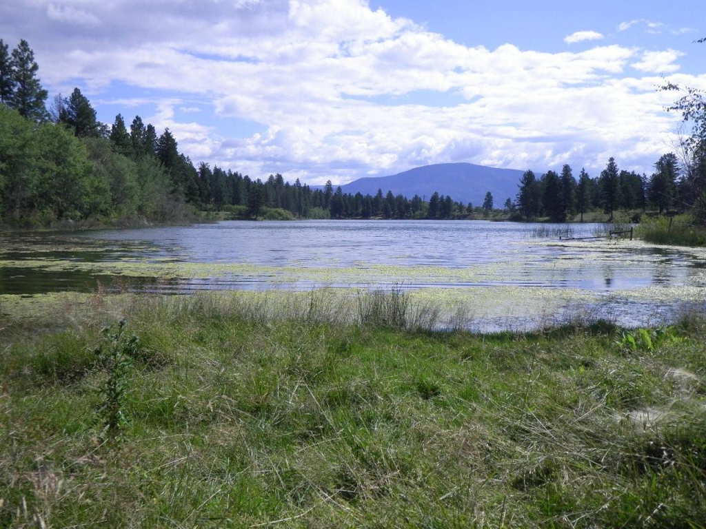 Burnell Lake