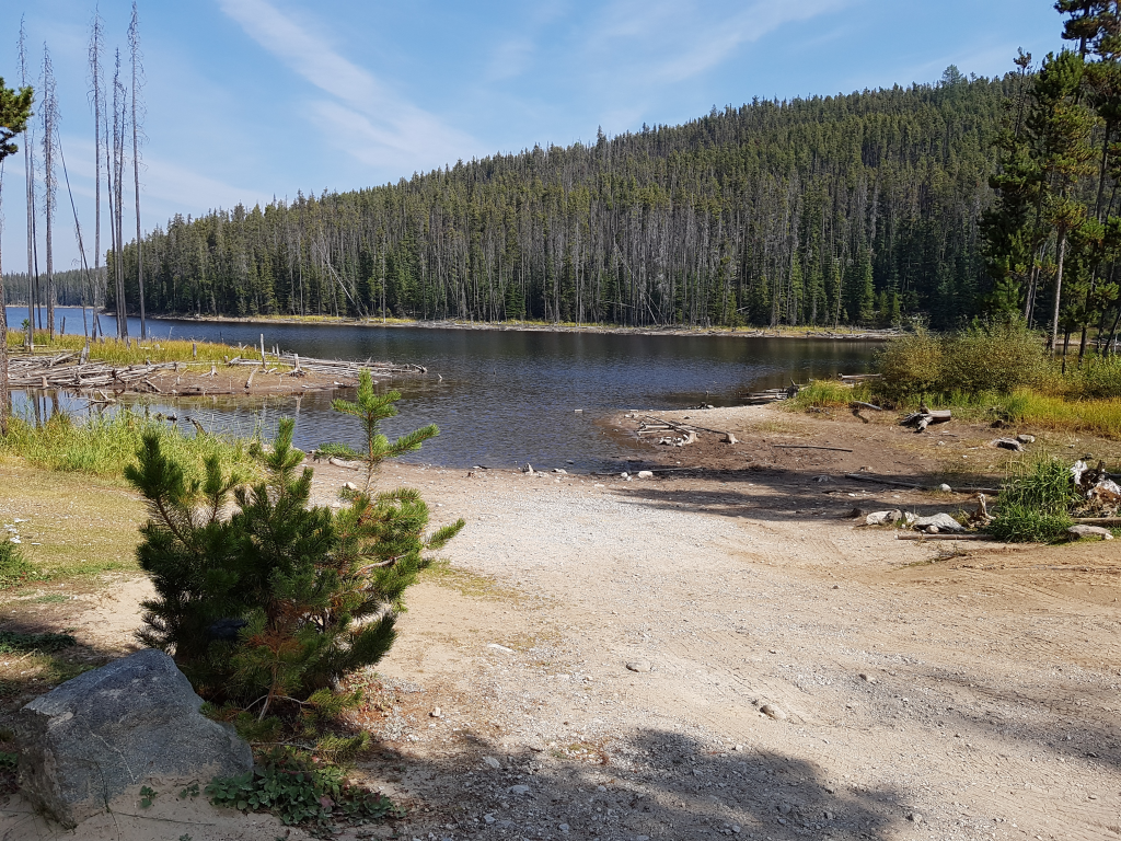 Allendale Lake