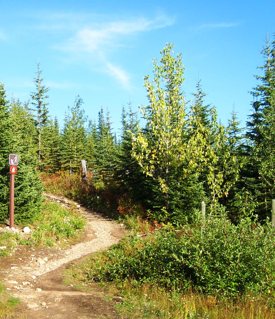 Trophy Meadows Trail Parking Area