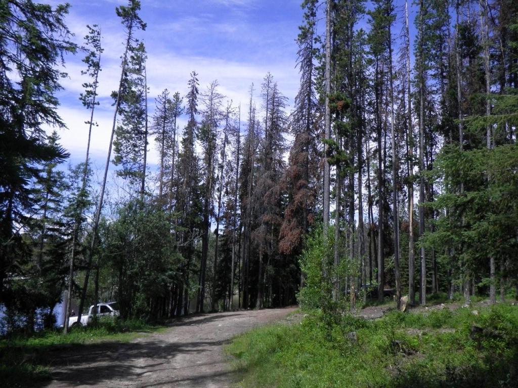 Postill Lake