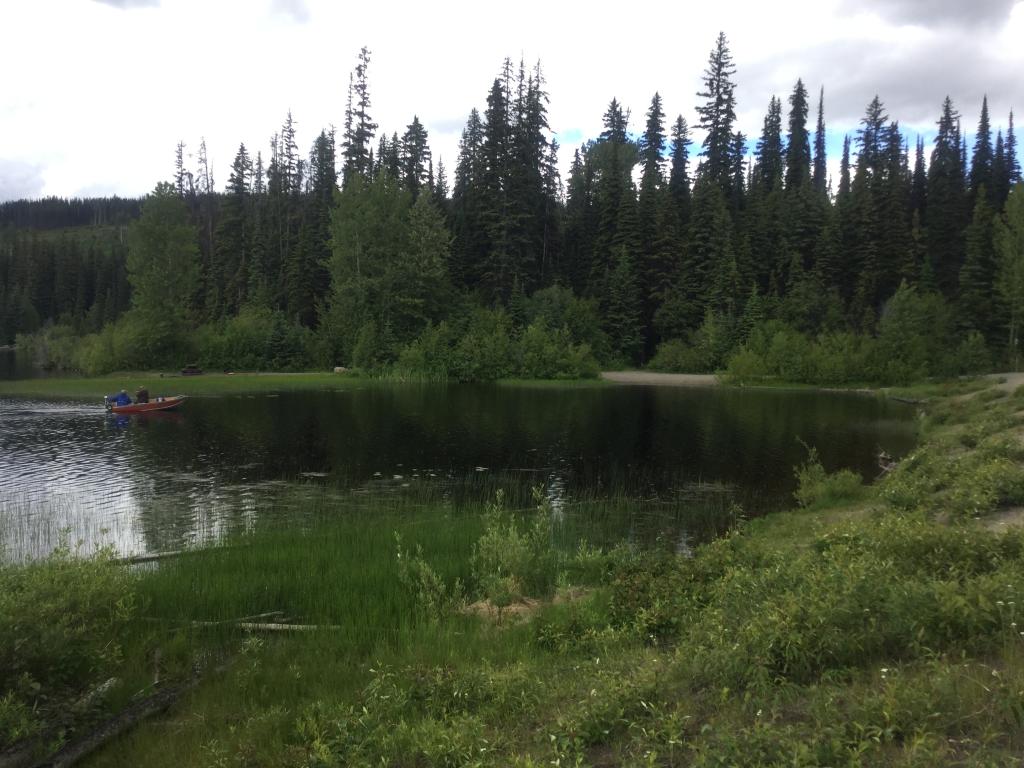 Jackpine Lake