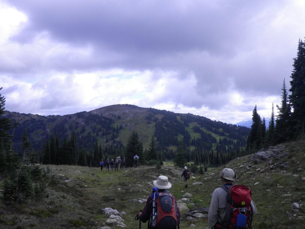 Nelson Mountain