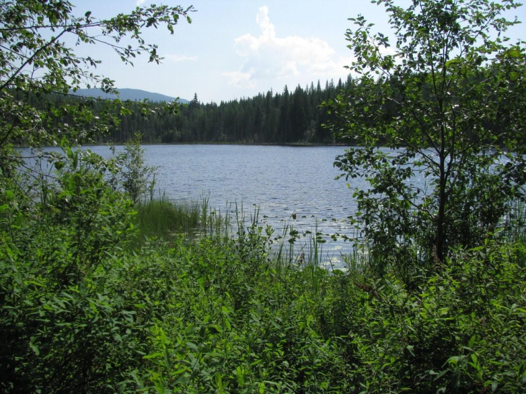 Baird Lake