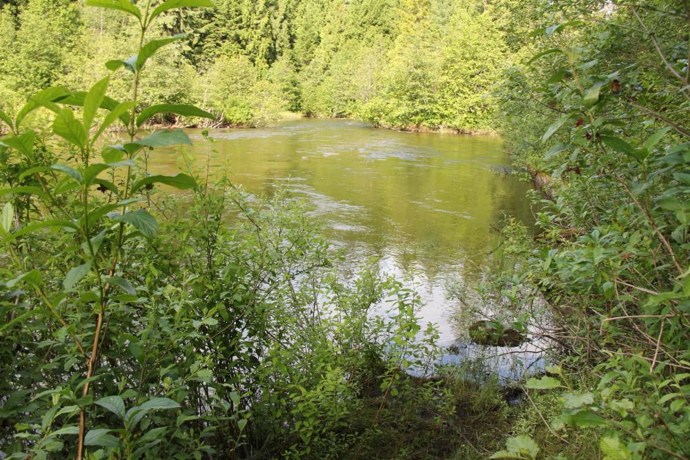 Humamilt Lake E.