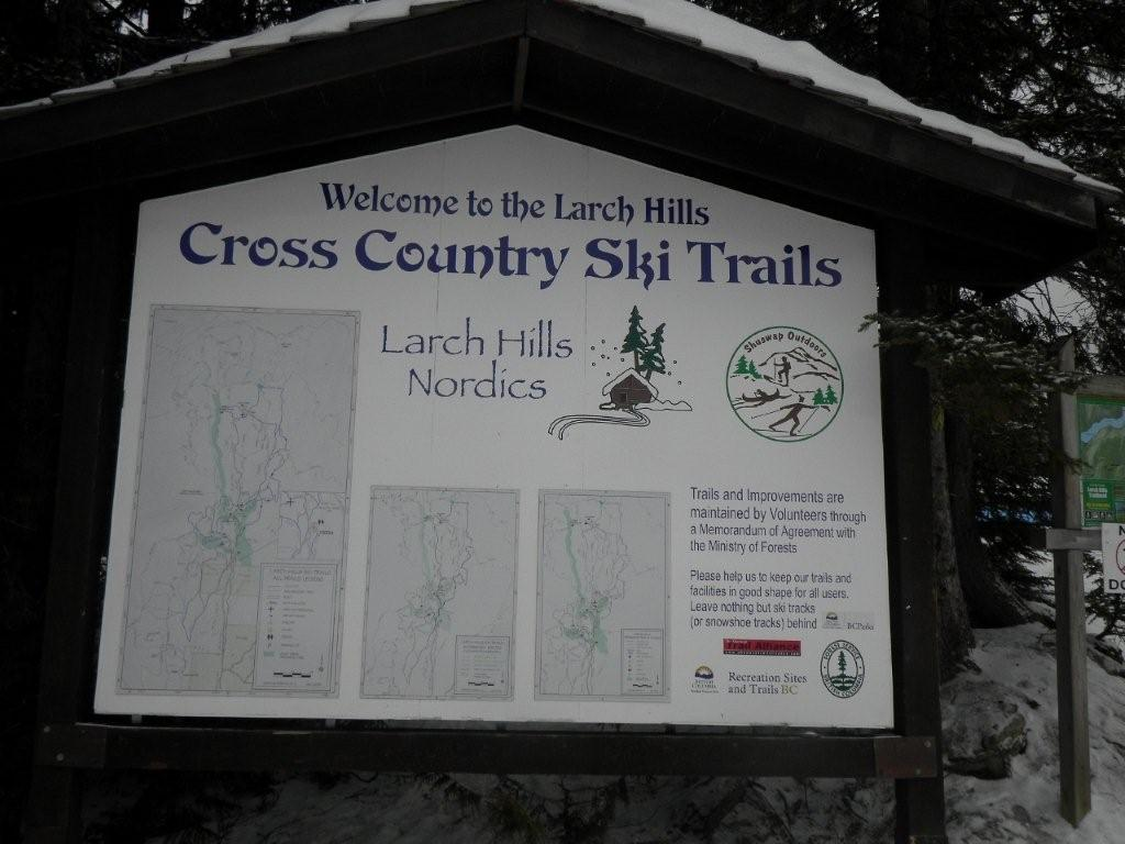 Larch Hills Trails