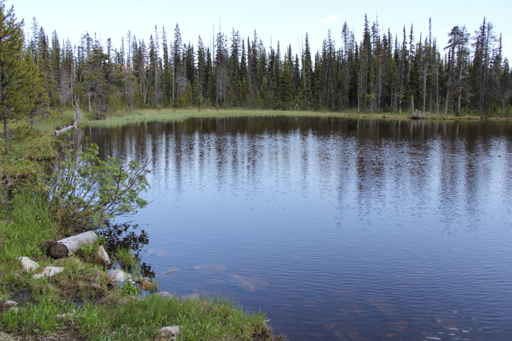 Kernaghan Lake North