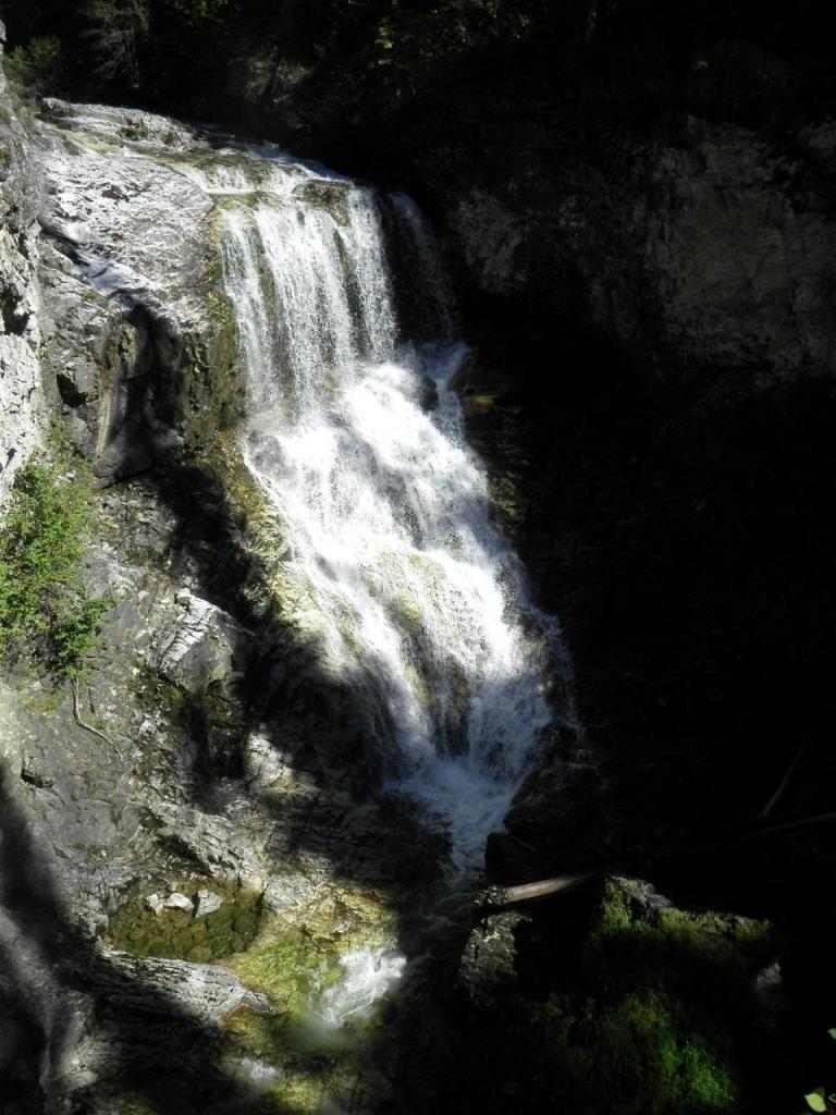 Winnifred Creek