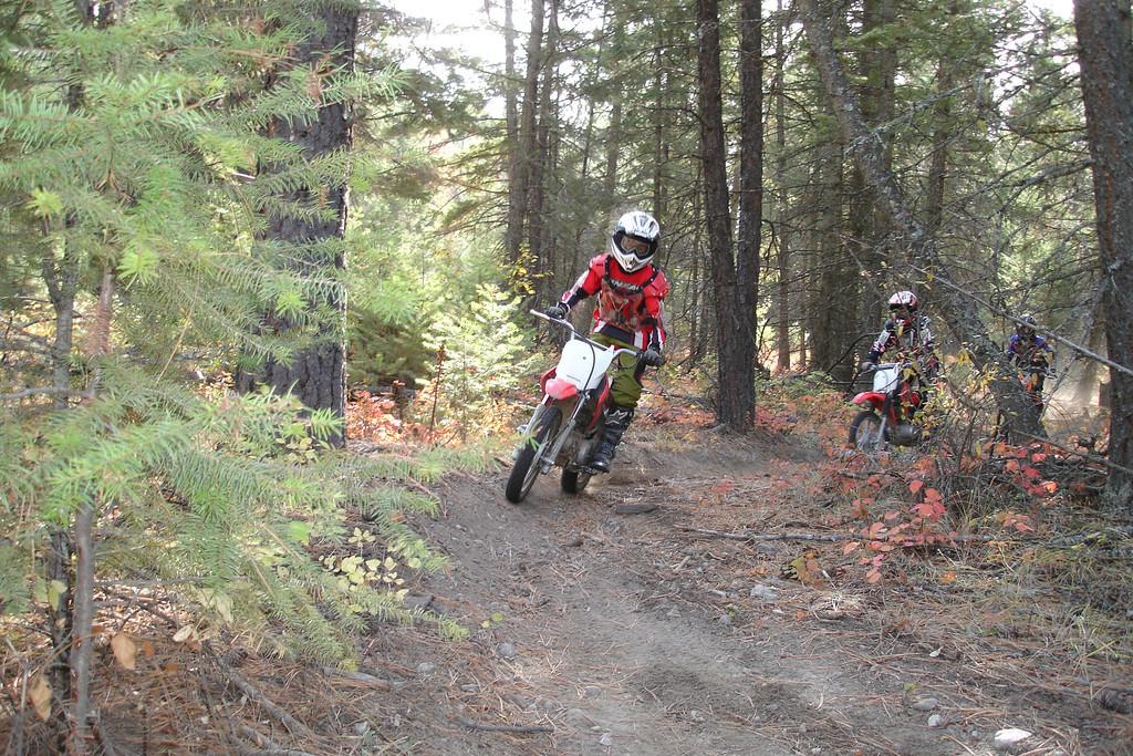 Okanagan Falls Ohv Trails