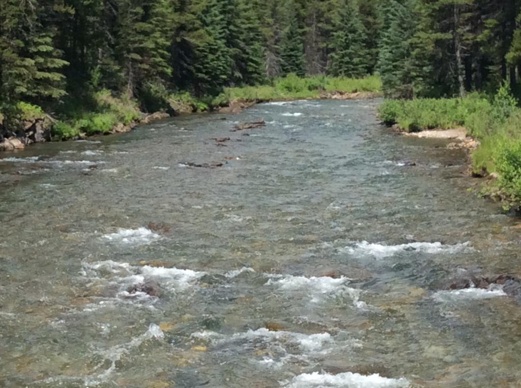 Weary Creek
