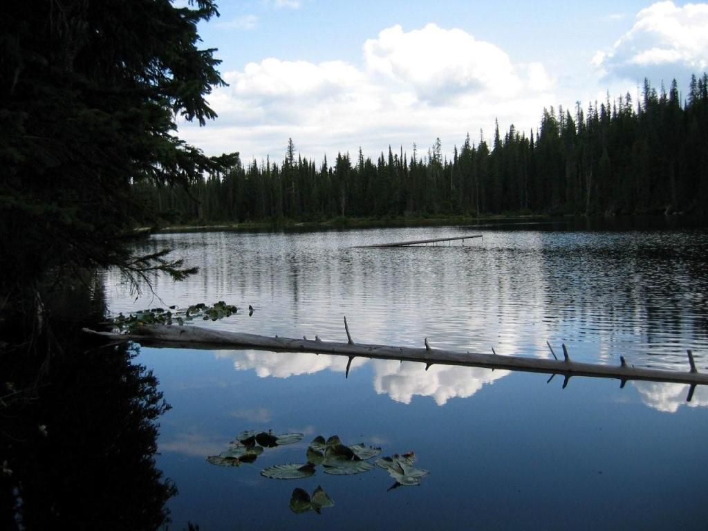 Cooley Lake