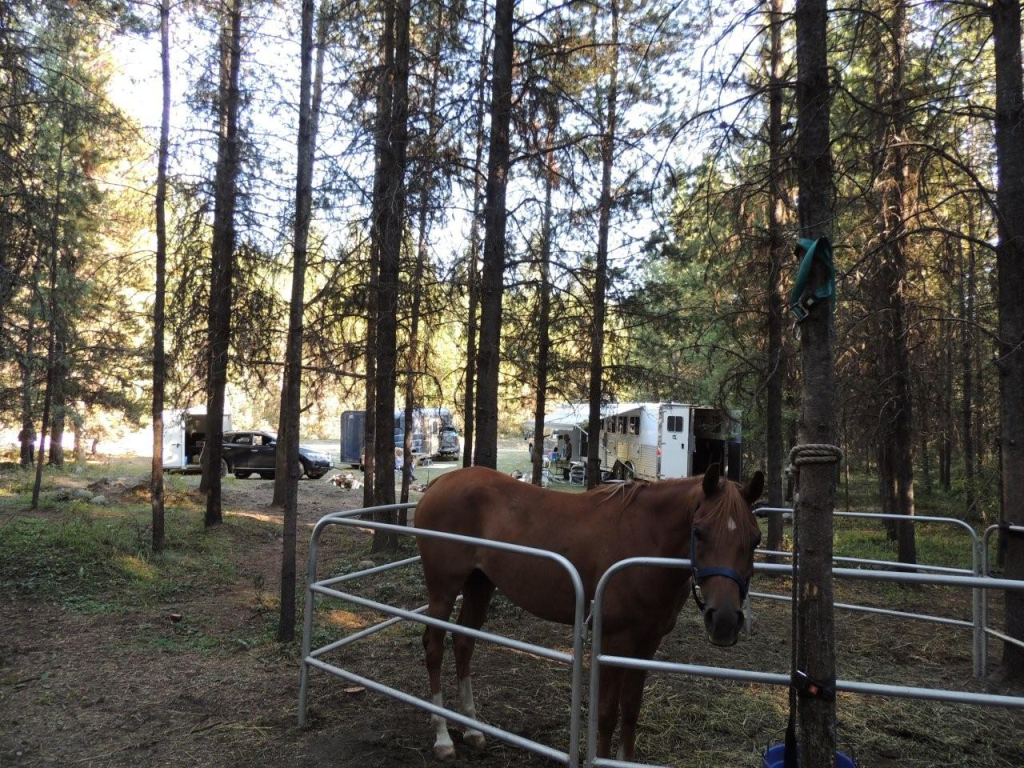 Trapping Creek Horse Camp