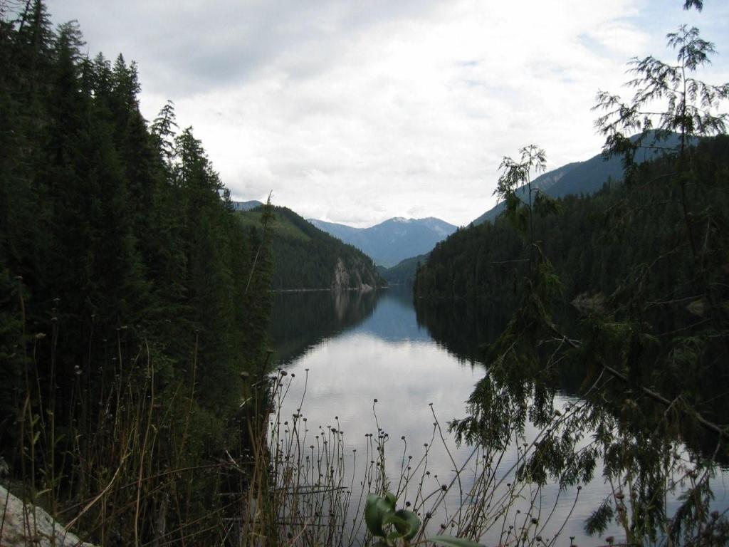 Wilson Lake W