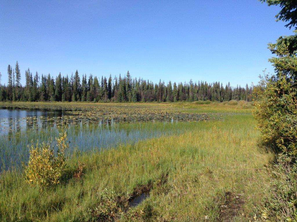 Little Scot Lake