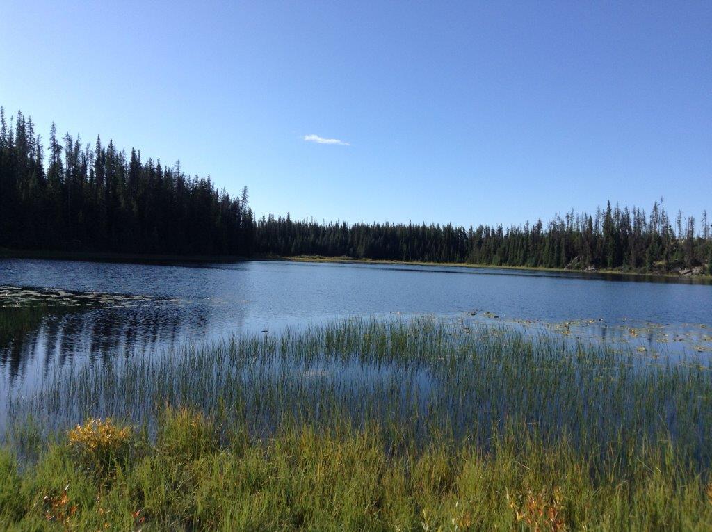 Little Scot Lake