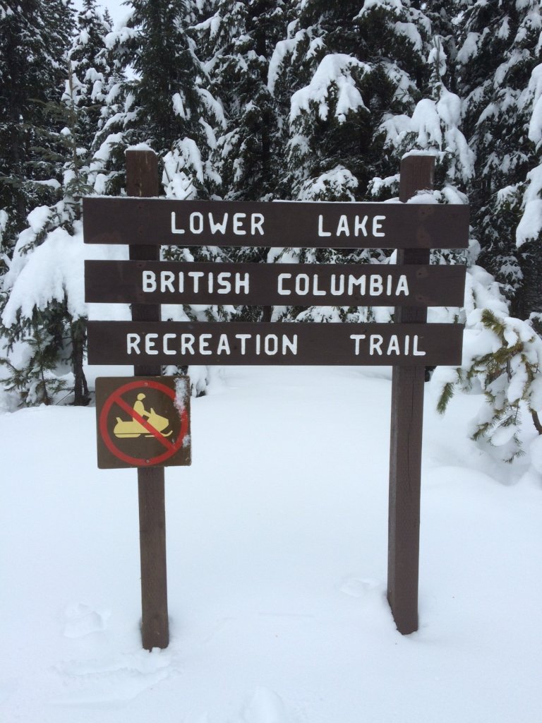 Lower Lake Cross Country Ski Trails