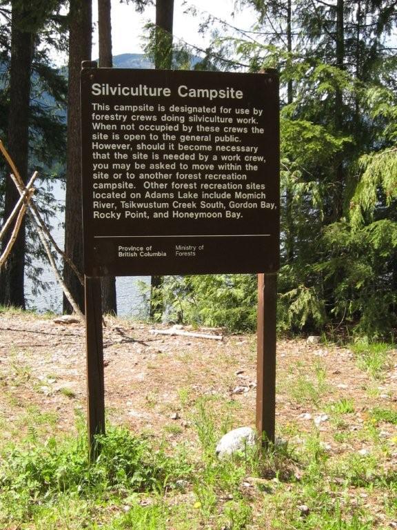 Tsikwustum Creek North (Silviculture Camp)