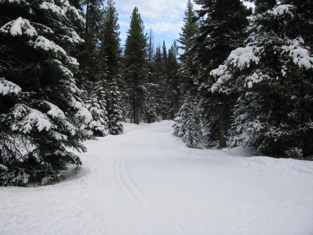 Mcculloch Cross Country Ski Trails
