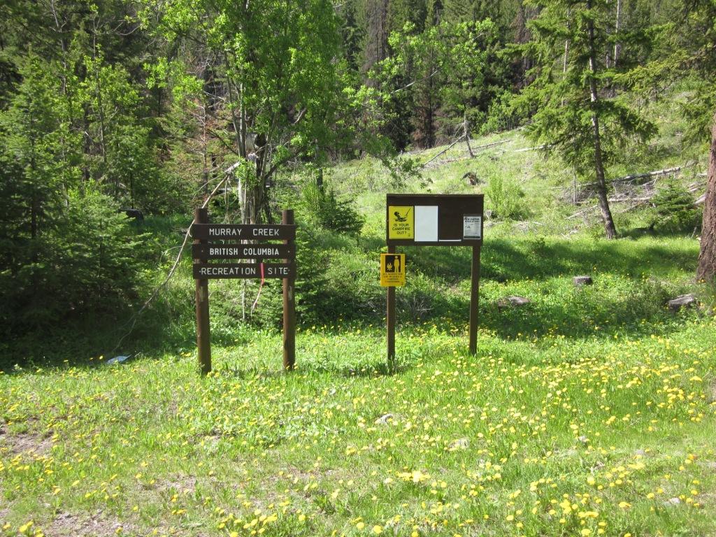 Murray Creek