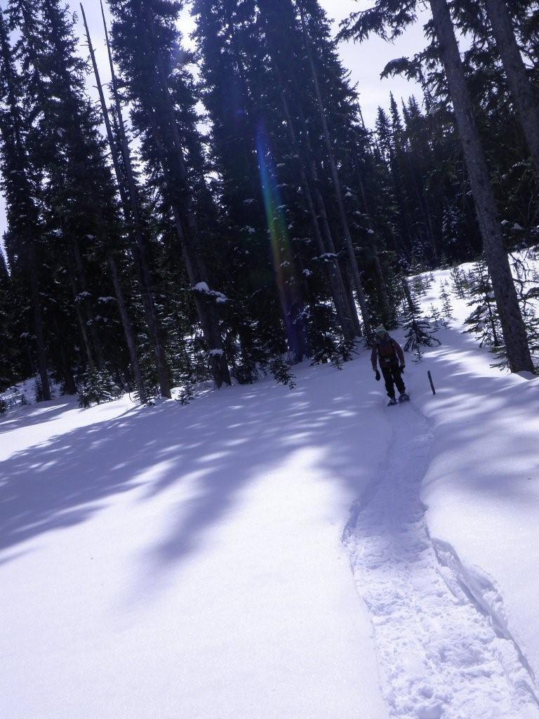Nickel Plate X/C Ski Trails