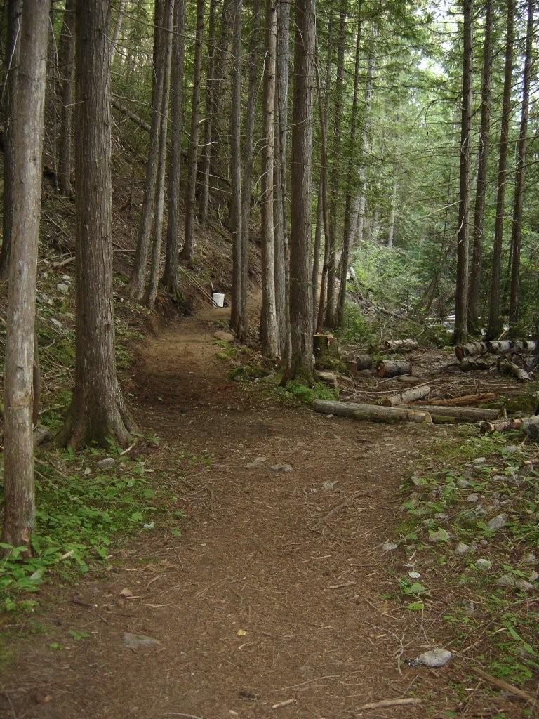 Sproule Creek Trail