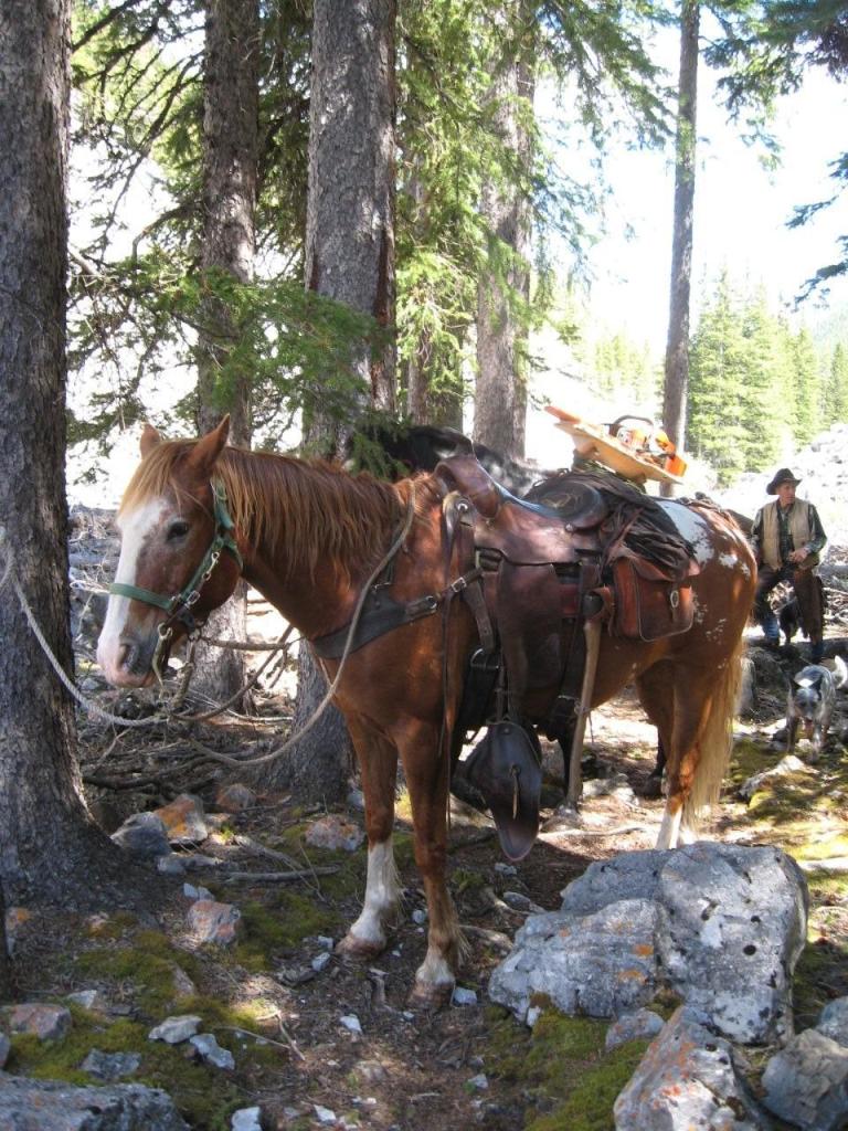 Hornaday Pass Trail