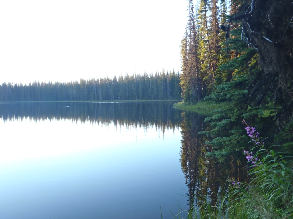 Placer Lake Trail