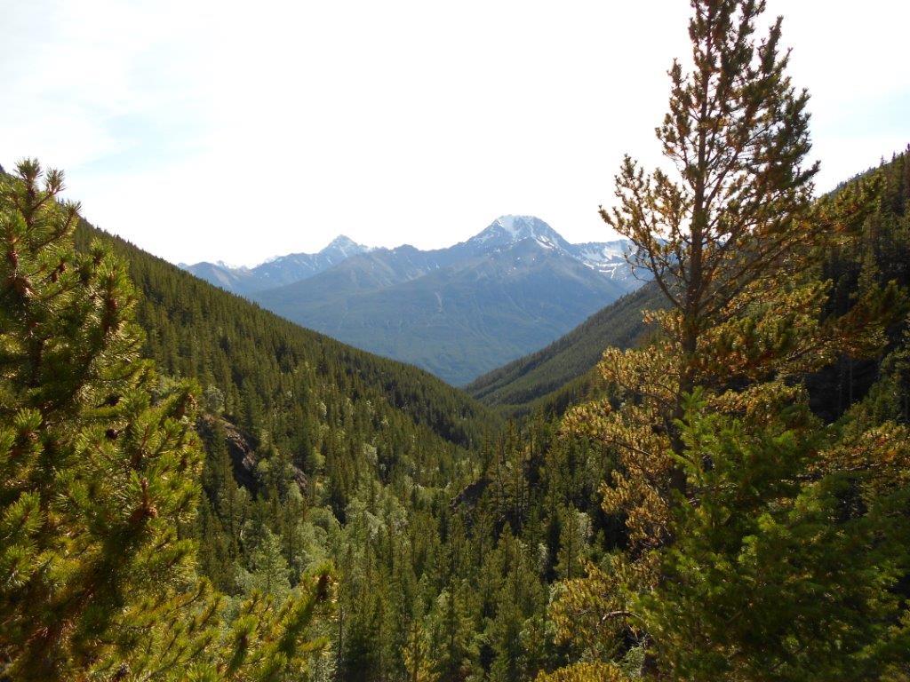 Burnt Creek Trail