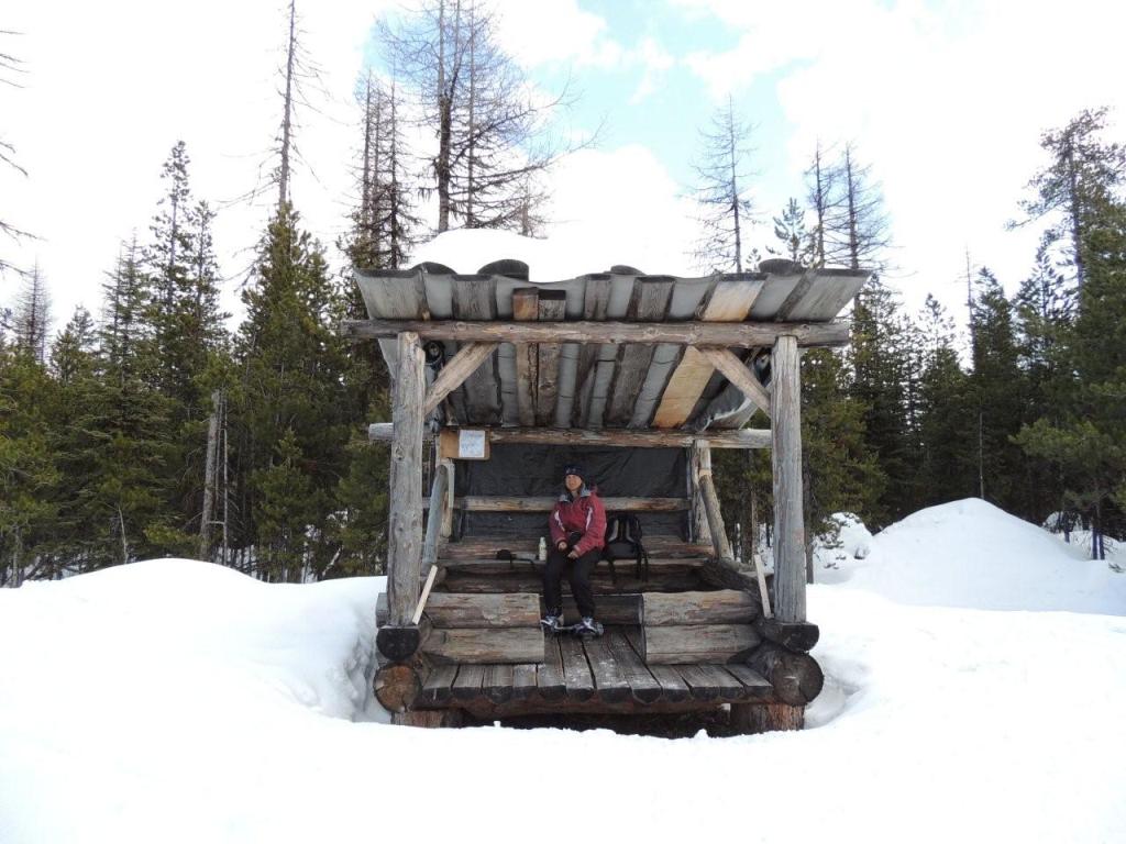 Mckinney Cross Country Ski Trails