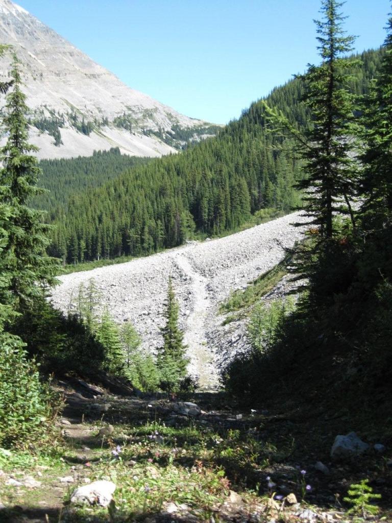 Aldridge Creek Trail
